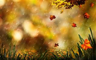 Falling Flowers - abstract rainy autumn rain wallpapers hd comfort amp calm