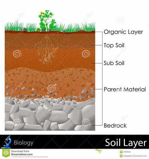 layers of the soil diagram team tipuranga soil layers