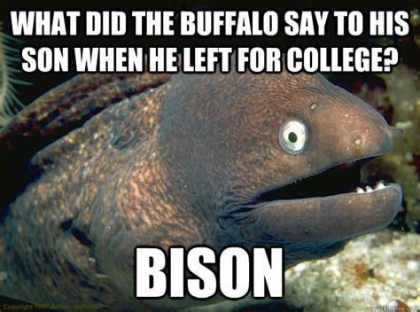 Bad Joke Eel Meme - ladies and gentlemen let me introduce you to the bad joke