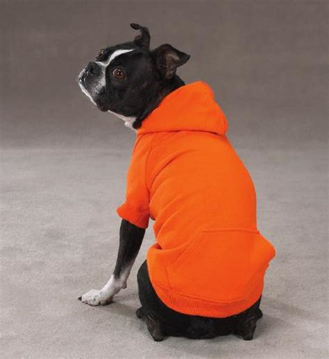 hoodies for dogs basic hoodie vibrant orange baxterboo