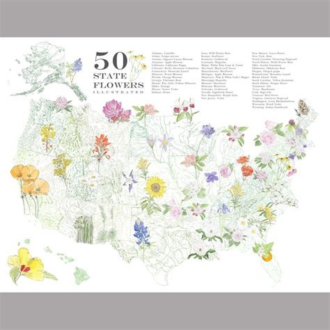 state flowers list list of state flowers 28 images 50states state flowers