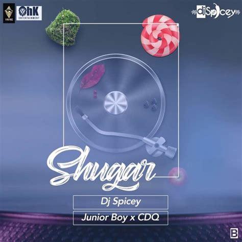 dj x mp3 download download mp3 dj spicey x cdq x junior boy shugar