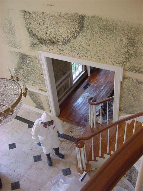 home mold removal service in orange county ca