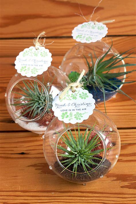 Wedding Gift Plant by Air Plant Wedding Favors Wedding Inspiration