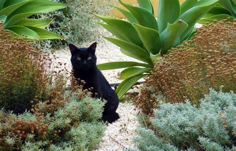 mediterranean backyard designs mediterranean garden design for rural garden in sicily