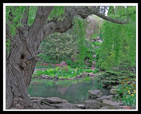 Botanical Gardens Ontario 122 Best Images About Hamilton My Home Town On Pinterest