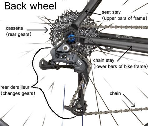 derailleur diagram understanding bike gears holistic athlete