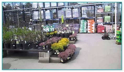 Lowes Garden Center Flowers by Garden Rack For Plants
