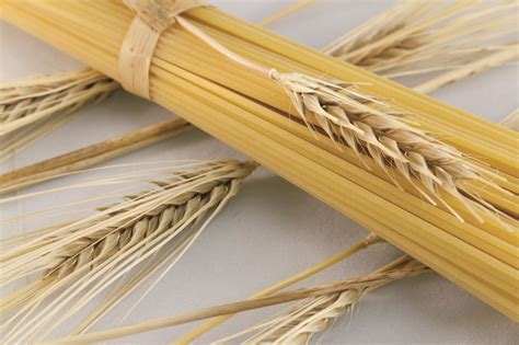 di commercio di bologna prezzi cereali awesome prezzo grano bologna contemporary acomo us