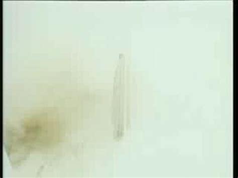 il mistero della casa sulla collina il mistero della casa sulla collina 1999 filmtv it