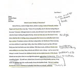 Controversial Essays by Controversy Essay