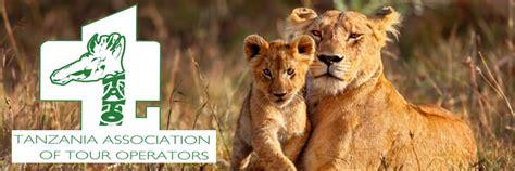 best safari tour operators choosing best tanzania safari tour operators tips