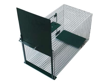 gabbia trappola per gatti strumenti di gestione e cattura trappole per la cattura
