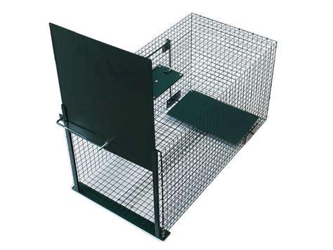gabbie cattura piccioni strumenti di gestione e cattura trappole per la cattura