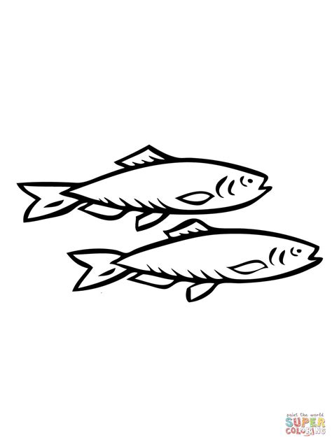 herring fish coloring page two herring fishes coloring page free printable coloring