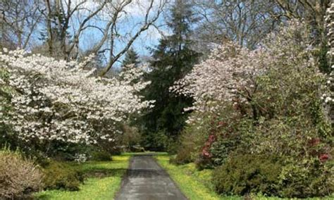 Picton Botanical Gardens In Bloom The Uk S Best Gardens For Flowers Tripulous