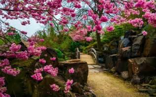 garden wallpaper hd images 1080p ten hd wallpaper pictures images free download