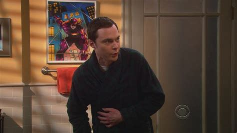 the agreement dissection the big bang theory wiki wikia 4x21 the agreement dissection the big bang theory image