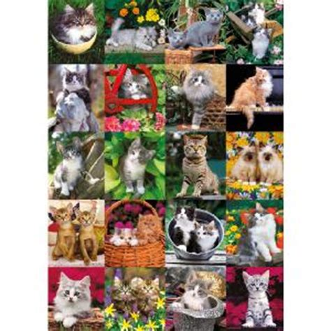 Jigsaw Puzzle Schmidt Cuddly Cats 1000 Pieces cats jigsaws and puzzles reviews