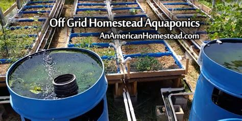 American Kitchen Designs Off Grid Homestead Aquaponics An American Homestead