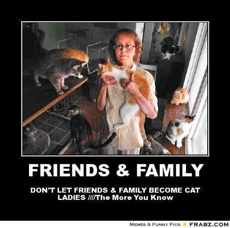 Cat Lady Meme - 345 best images about crazy cat ladies on pinterest i love cats lady and cats