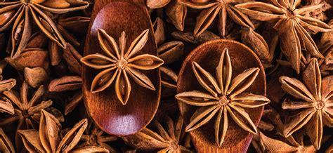 manfaat bunga lawang  kesehatan cairo food