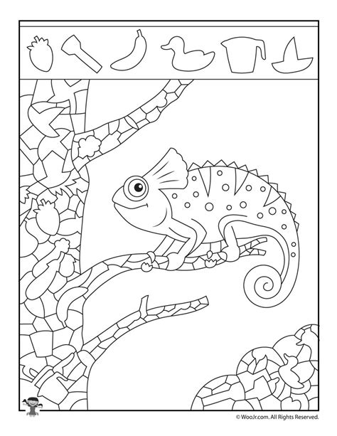 iguana hidden picture activity woo jr kids activities