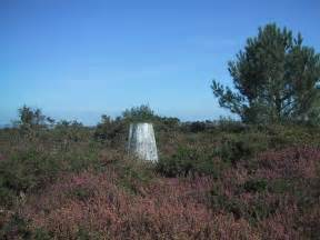 Surrounded By Gorse by Trig Point Surrounded By And 169