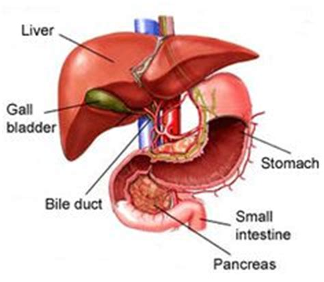 Swelling In And Joints Liver Detox by Liver Swelling On