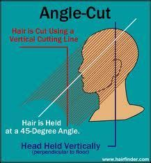 cutting diagrams for a shag cut 1000 images about diagram haircut on pinterest haircuts