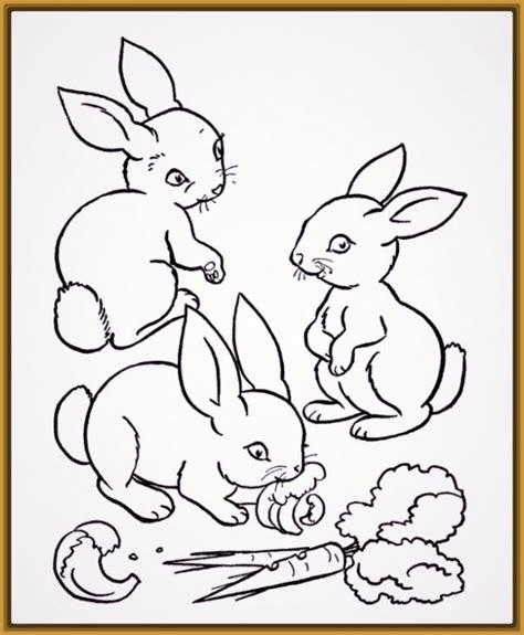 imagenes de conejitos bonitos para dibujar archivos dibujos de conejitos infantiles para imprimir archivos