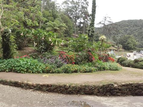 Hakgala Botanic Gardens Nuwara Eliya 2018 All You Need Hakgala Botanical Garden