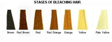 best colour to use on bleached hair to give low lights hair color hair care and the no more bad hair days kit by
