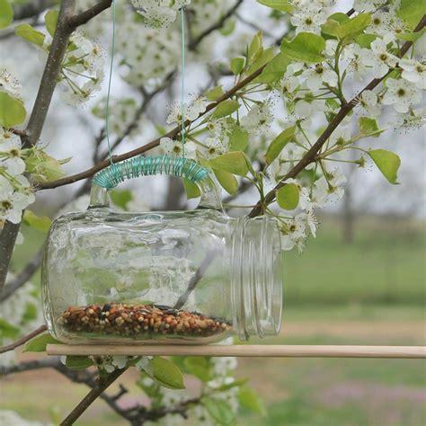 homemade bird food for winter birdcage design ideas