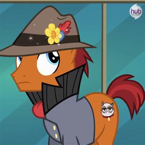 Promo Sprei Cutie Cat image rarity takes manehattan promo grumpy cat png my pony friendship is magic wiki