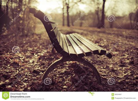 bench autumn scene royalty  stock photography image