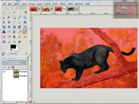 gimp quick tutorial gimp tutorial how to use quick mask selections by