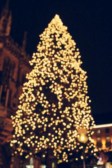 christmas tree lights  tumblr