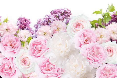 pink and white desk pink white peonies floral desktop wallpaper background