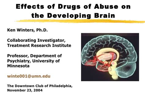 Effects Of Detox On The Brain by Effects Of Drugs On The Brain