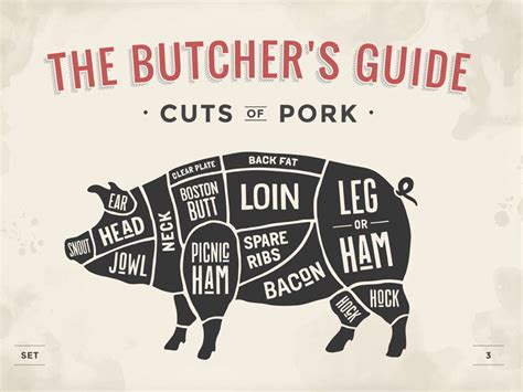 pig butcher diagram cooking with different cuts of pork saga