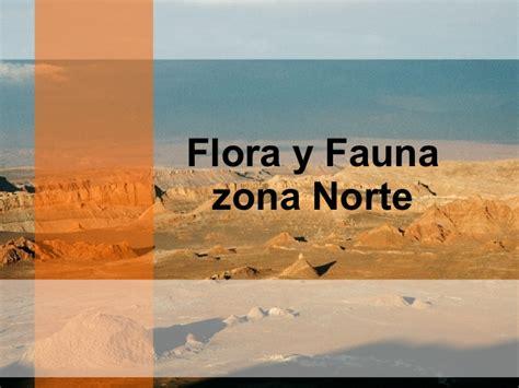 power zonas geo y flora y fauna zona norte de chile flora y fauna de la zona norte de chile
