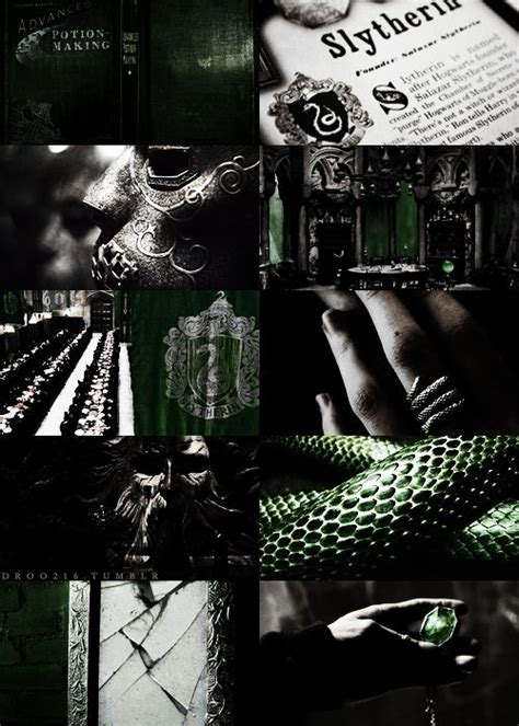 green room riddle 49 best slytherin house images on slytherin house slytherin pride and harry potter