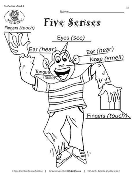 coloring pages five senses preschool sense of hearing activities download and print five