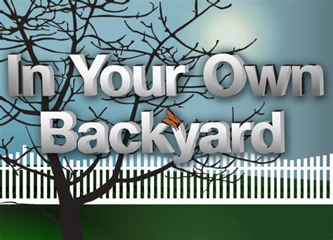 back in your own backyard watch full episodes online of in your own backyard on pbs undersea northwest florida