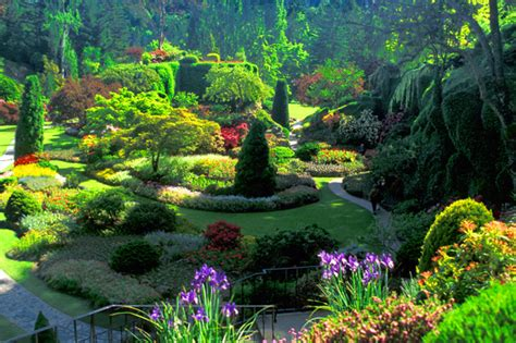 best gardens the best garden butchart gardens colombia dot