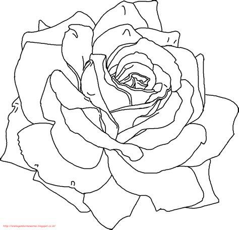 gambar mewarnai bunga mawar  anak paud  tk
