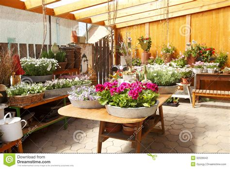 Flower Interior by Flower Shop Interior Stock Photo Image Of Florist Image