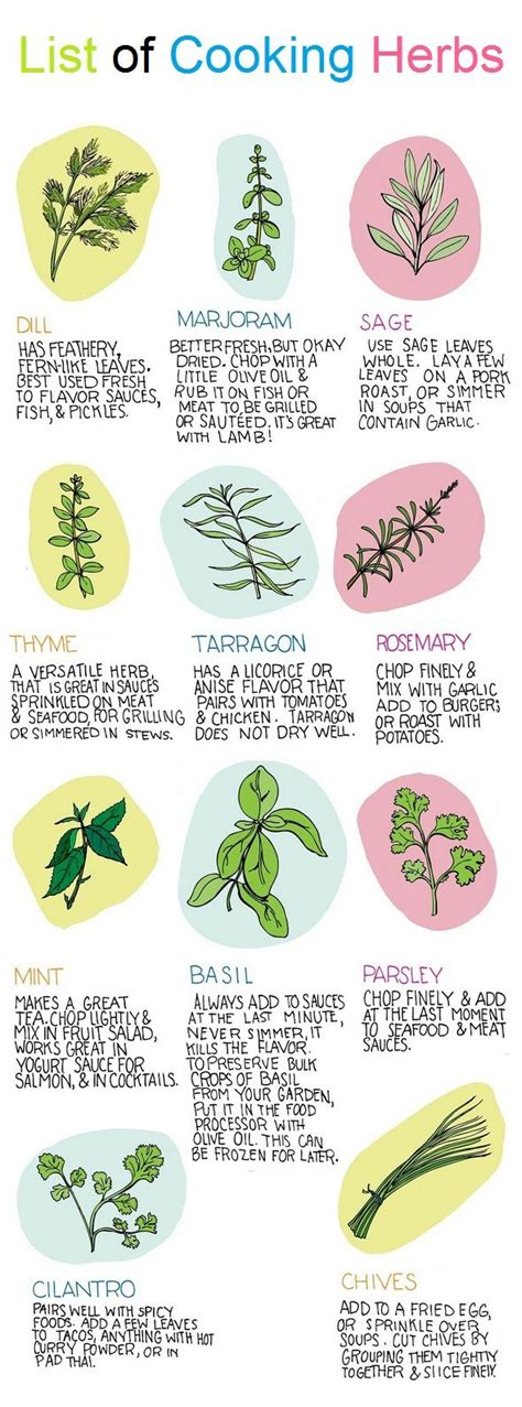 herbal academy using flavorful culinary herbs herbal 13 best herb posters images on pinterest healing