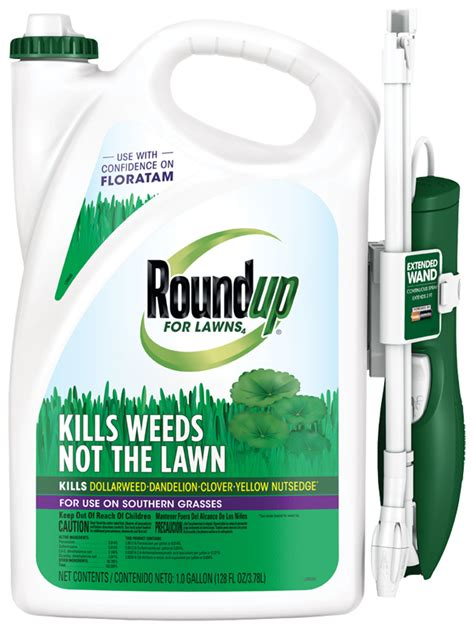 roundup for lawns roundup 174 for lawns 4 grass friendly killer with wand